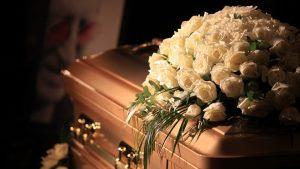 Animal cremation in Bangalore